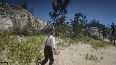 Red Dead Redemption 2 Chapitre 5 Mission Bienvenue dans le nouveau monde