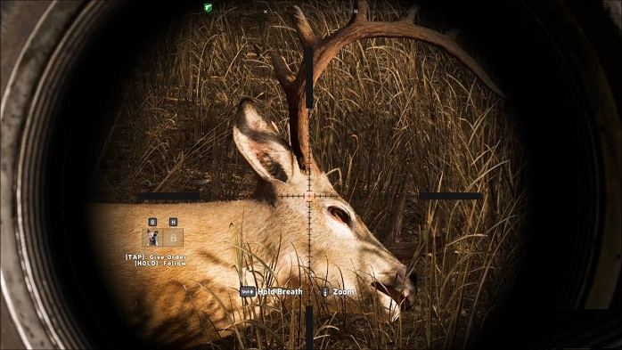 Cerf guide localisation Animaux Far Cry New Dawn Deer