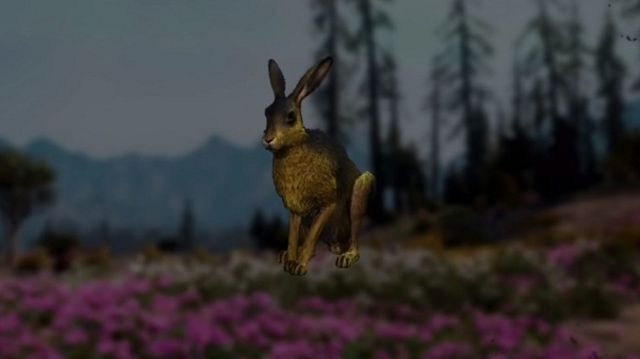 Emplacement localisation Hare lièvre dans Far Cry New Dawn
