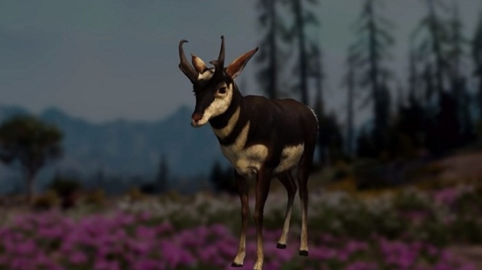 Pronghorn guide localisation Animaux Far Cry New Dawn