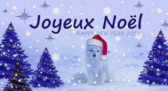 Joyeux Noël 2019 et Joyeuses fêtes de fin d'année 2019