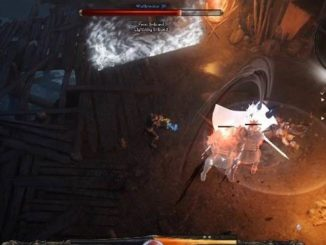 Naaralog Boss dans Wolcen Lords of Mayhem Soluce complète