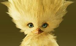Poussin Chocobo final fantasy 7 Remake Invocations liste et guide FF7R