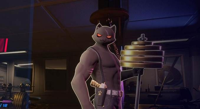 Fortnite meowscles Ombre