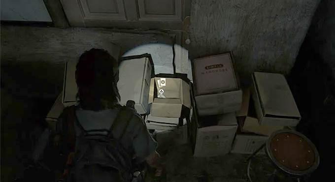 Toutes les Cartes à collectionner dans The Last of Us Part 2 Seattle Jour 2 - Sahir the Sorcerer