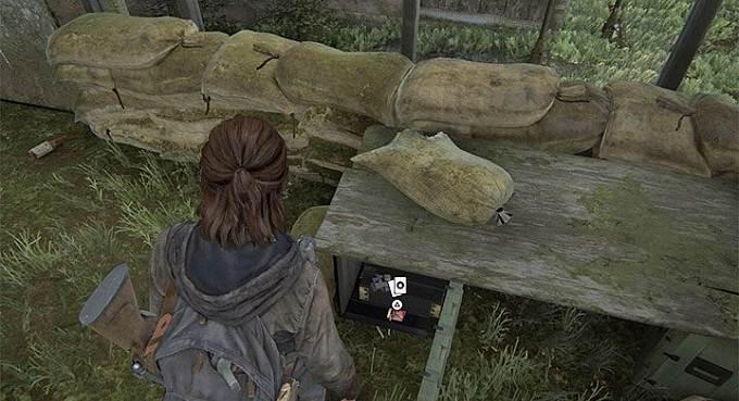 Guide The Last of Us 2 Seatlle Jour1 Centre-ville Cartes à collectionner - Docteur Uckmann