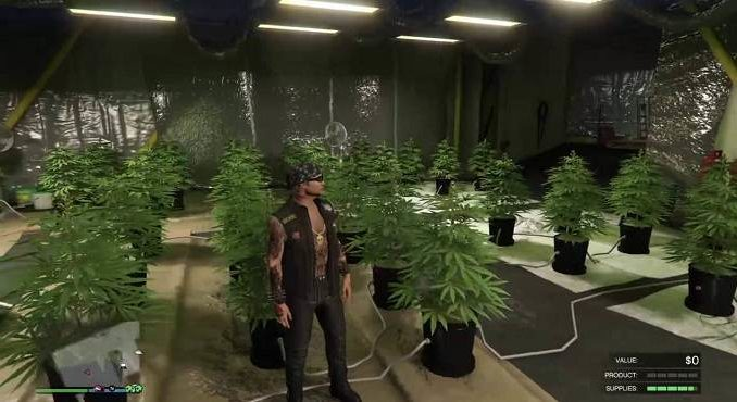 Obtenir une ferme de cannabis dans GTA Online