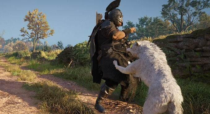 Assassin's Creed Valhalla Comment amener un loup au combat